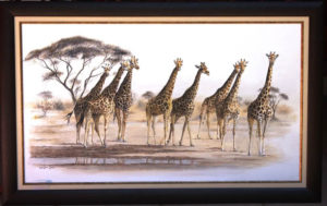 giraffes-at-waterhole