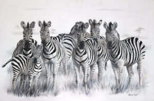 zebra-troop